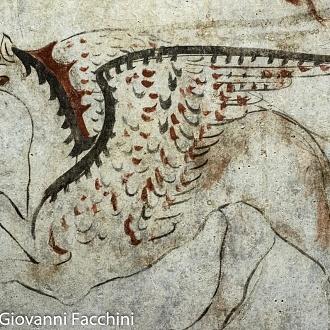 Paestum, i depositi del museo